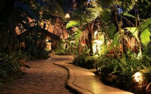 wisata-malam-bandung-kampung-daun-750x467